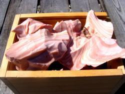 pink opal rough stone